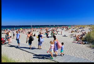 FOTO: Adrian Saly, Amager Strandpark I/S